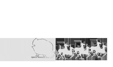 Troula | Elsequitodepapanoel